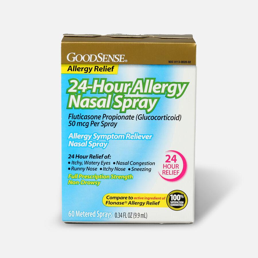 GoodSense® 24-Hour Allergy Relief Nasal Spray, 0.34 oz, , large image number 0