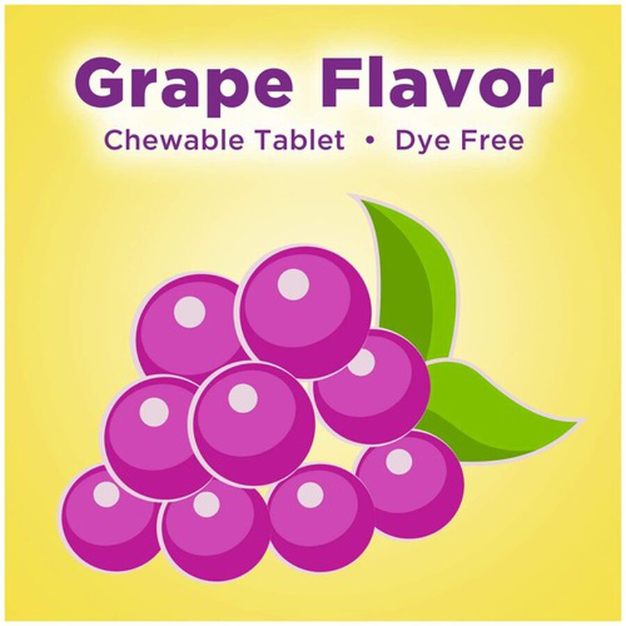 Dramamine Motion Sickness Relief for Kids, Grape Flavor, 8 ct, , large image number 5